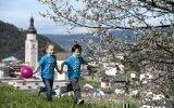 fruehling-primavera-spring-01