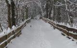 winter-inverno-04
